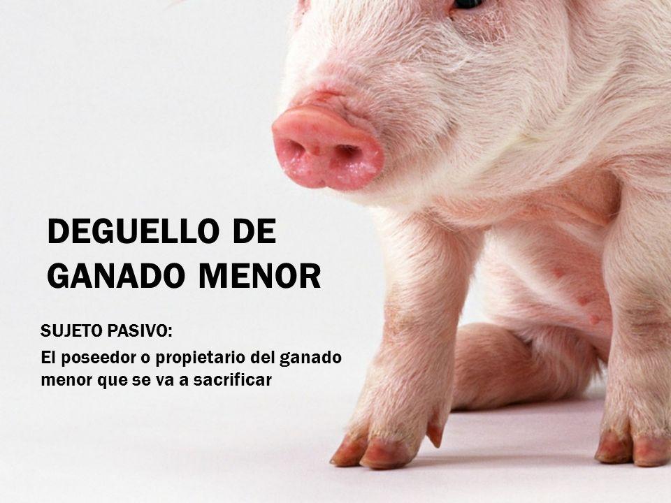 DEGUELLO DE GANADO MENOR SUJETO PASIVO: El poseedor o propietario del ganado menor que se va a sacrificar