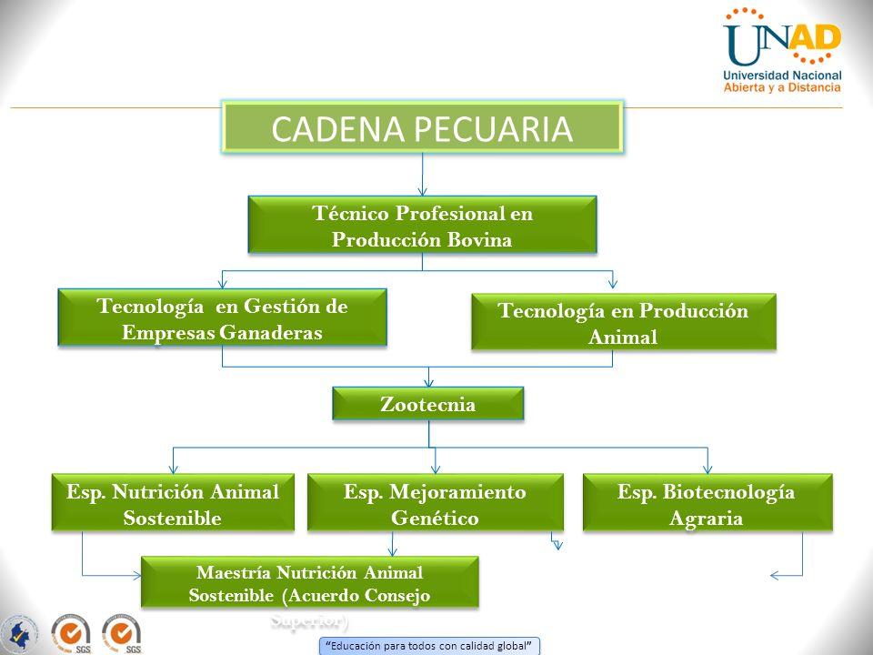 Educación para todos con calidad global CADENA PECUARIA Técnico Profesional en Producción Bovina Tecnología en Gestión de Empresas Ganaderas Esp. Nutr