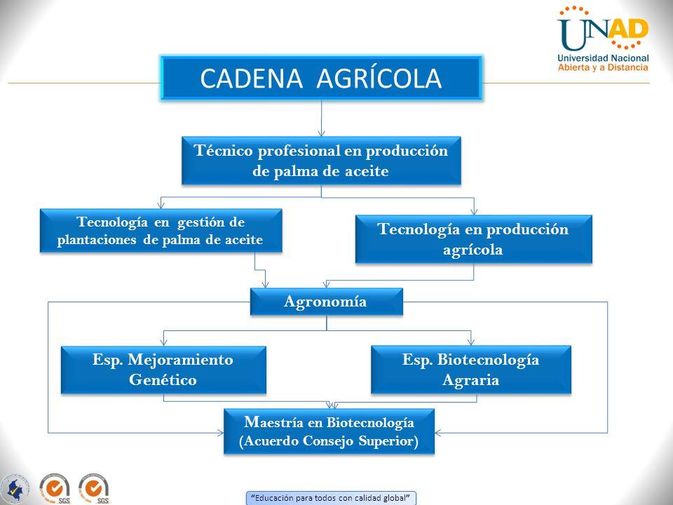 Educación para todos con calidad global CADENA AGRÍCOLA Técnico profesional en producción de palma de aceite Tecnología en gestión de plantaciones de