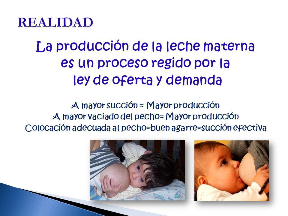 La producción de la leche materna es un proceso regido por la ley de oferta y demanda A mayor succión = Mayor producción A mayor vaciado del pecho= Mayor producción Colocación adecuada al pecho=buen agarre=succión efectiva