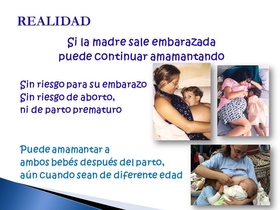 Si la madre sale embarazada puede continuar amamantando Sin riesgo para su embarazo Sin riesgo de aborto, ni de parto prematuro Puede amamantar a ambos bebés después del parto, aún cuando sean de diferente edad