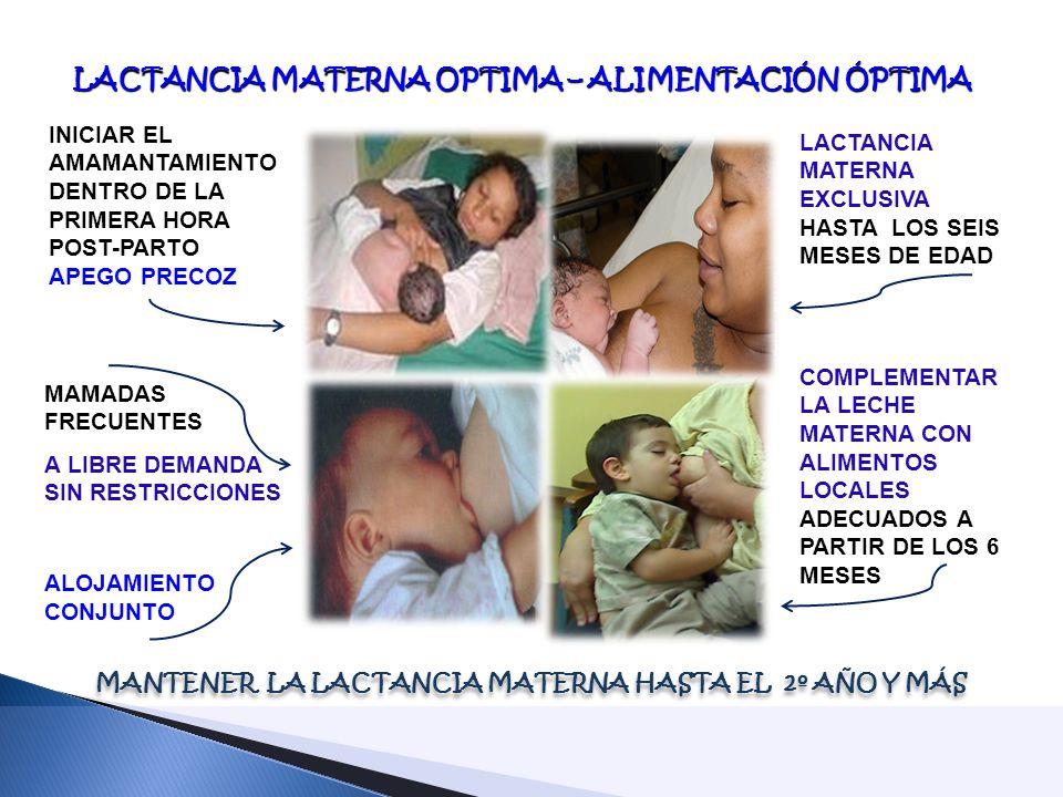 LACTANCIA MATERNA OPTIMA – ALIMENTACIÓN ÓPTIMA LACTANCIA MATERNA OPTIMA – ALIMENTACIÓN ÓPTIMA INICIAR EL AMAMANTAMIENTO DENTRO DE LA PRIMERA HORA POST-PARTO APEGO PRECOZ MAMADAS FRECUENTES A LIBRE DEMANDA SIN RESTRICCIONES ALOJAMIENTO CONJUNTO MANTENER LA LACTANCIA MATERNA HASTA EL 2º AÑO Y MÁS COMPLEMENTAR LA LECHE MATERNA CON ALIMENTOS LOCALES ADECUADOS A PARTIR DE LOS 6 MESES LACTANCIA MATERNA EXCLUSIVA HASTA LOS SEIS MESES DE EDAD