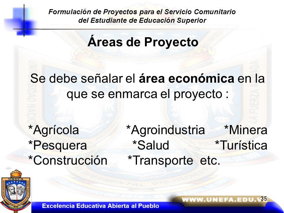 Áreas de Proyecto Se debe señalar el área económica en la que se enmarca el proyecto : *Agrícola *Agroindustria *Minera *Pesquera *Salud *Turística *C