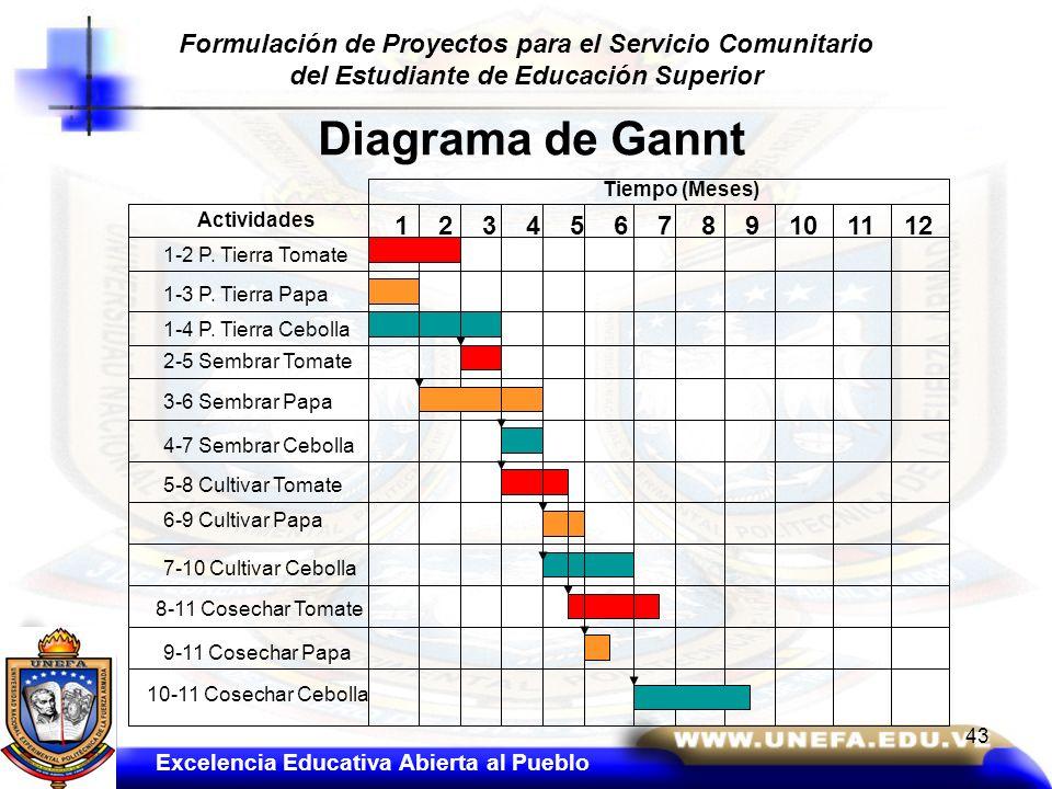 Diagrama de Gannt Tiempo (Meses) 1 2 3 4 5 6 7 8 9 10 11 12 Actividades 1-2 P. Tierra Tomate 1-3 P. Tierra Papa 1-4 P. Tierra Cebolla 5-8 Cultivar Tom