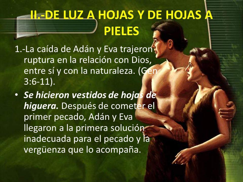II.-DE LUZ A HOJAS Y DE HOJAS A PIELES 1.-La caída de Adán y Eva trajeron ruptura en la relación con Dios, entre sí y con la naturaleza.