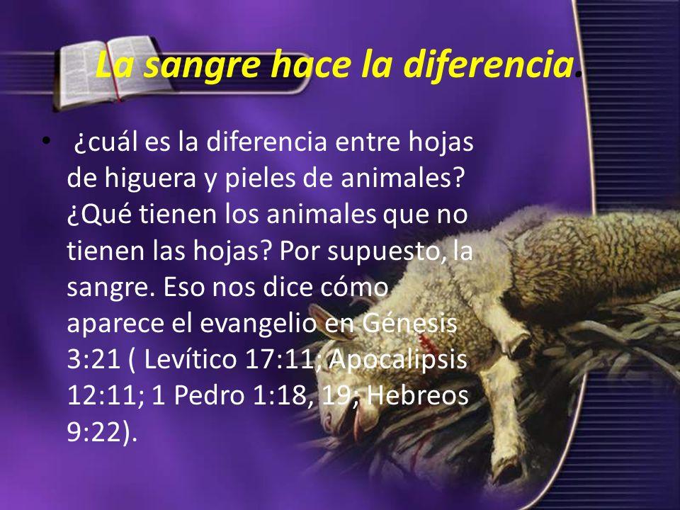 La sangre hace la diferencia.¿cuál es la diferencia entre hojas de higuera y pieles de animales.