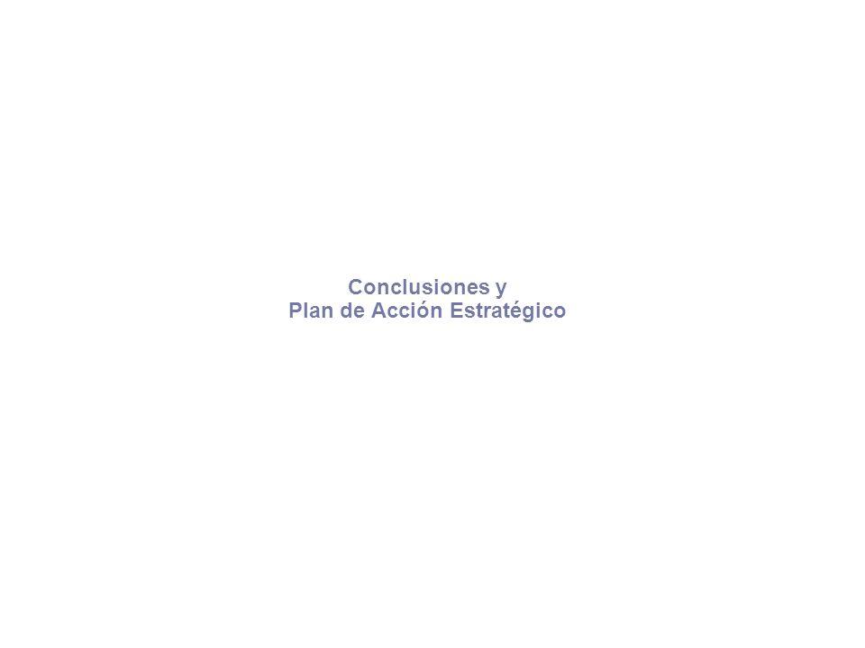 Conclusiones y Plan de Acción Estratégico