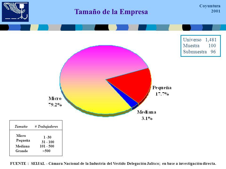 Tamaño de la Empresa Micro Pequeña 1 -30 31 - 100 Tamaño # Trabajadores Mediana Grande 101 - 500 >500 FUENTE : SEIJAL - Cámara Nacional de la Industria del Vestido Delegación Jalisco; en base a investigación directa.