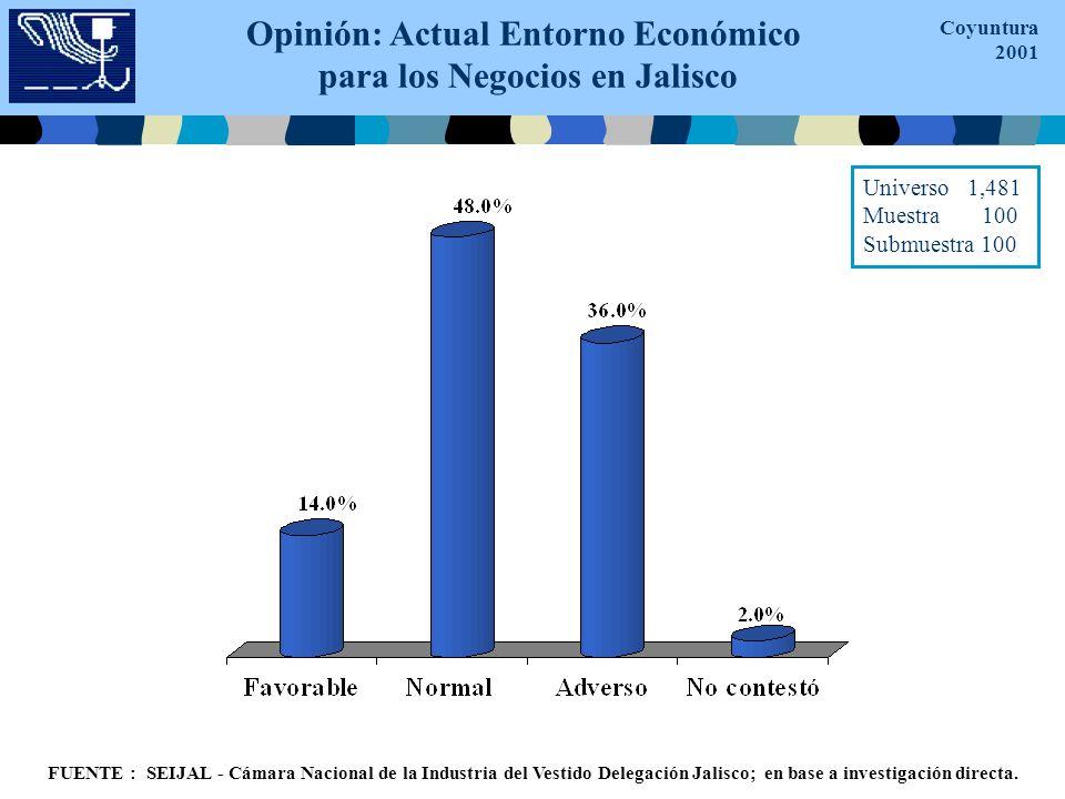 Opinión: Actual Entorno Económico para los Negocios en Jalisco Coyuntura 2001 FUENTE : SEIJAL - Cámara Nacional de la Industria del Vestido Delegación Jalisco; en base a investigación directa.