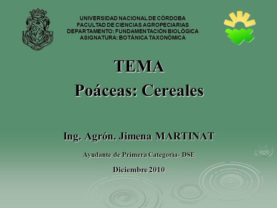 TEMA Poáceas: Cereales Ing. Agrón. Jimena MARTINAT Ayudante de Primera Categoría- DSE Diciembre 2010 UNIVERSIDAD NACIONAL DE CÓRDOBA FACULTAD DE CIENC