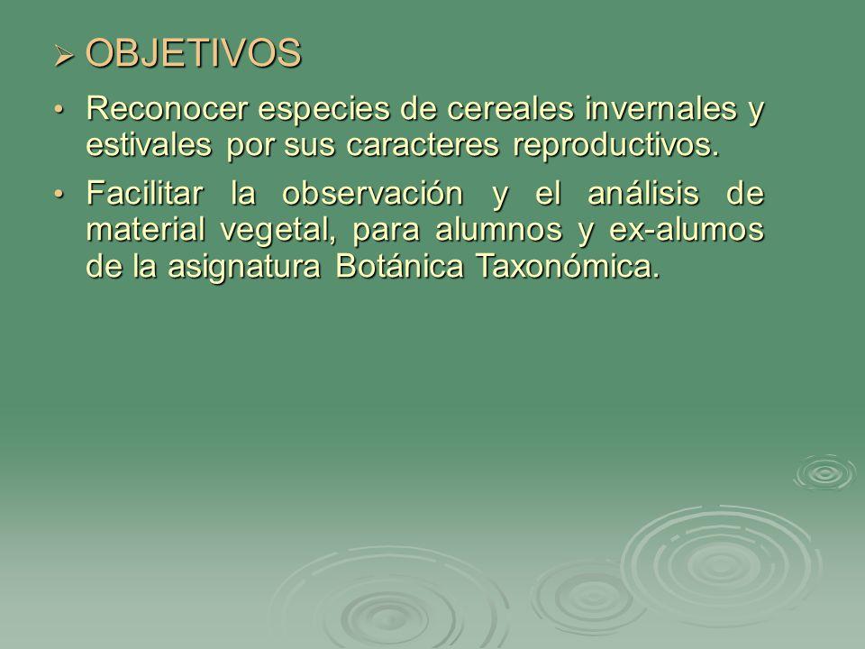BIBLIOGRAFÍA RECOMENDADA PARA EL ALUMNO BIBLIOGRAFÍA RECOMENDADA PARA EL ALUMNO BURKART, A.