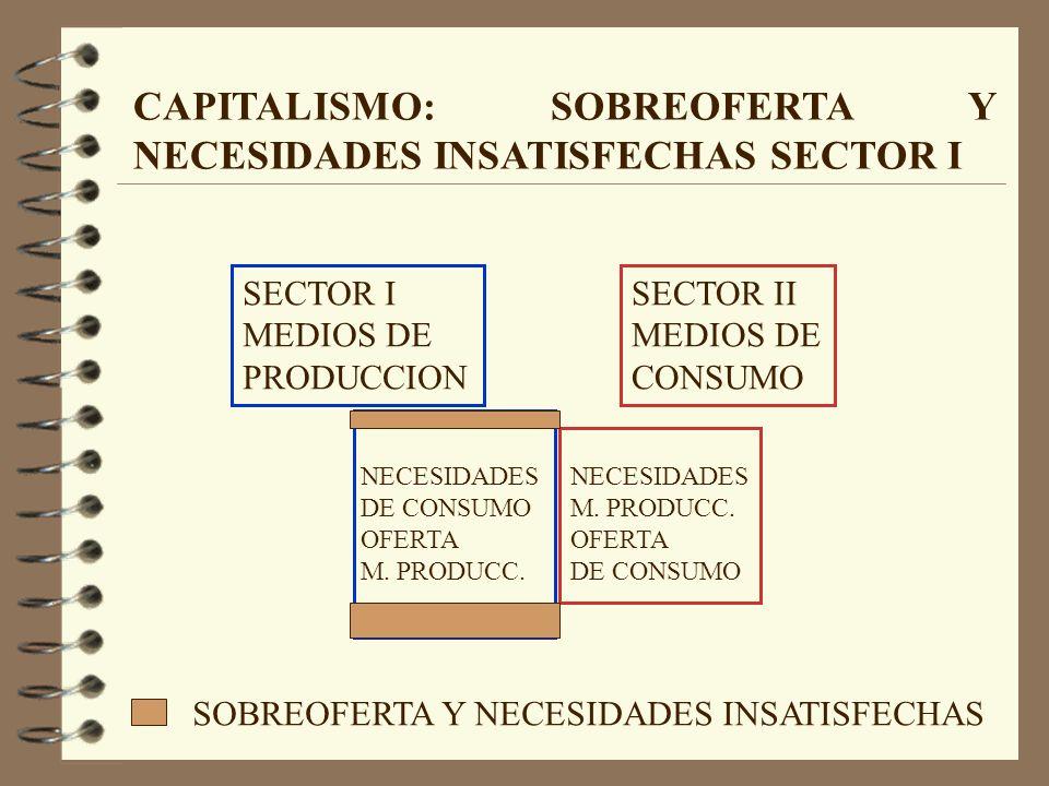 SECTOR II MEDIOS DE CONSUMO NECESIDADES M. PRODUCC.
