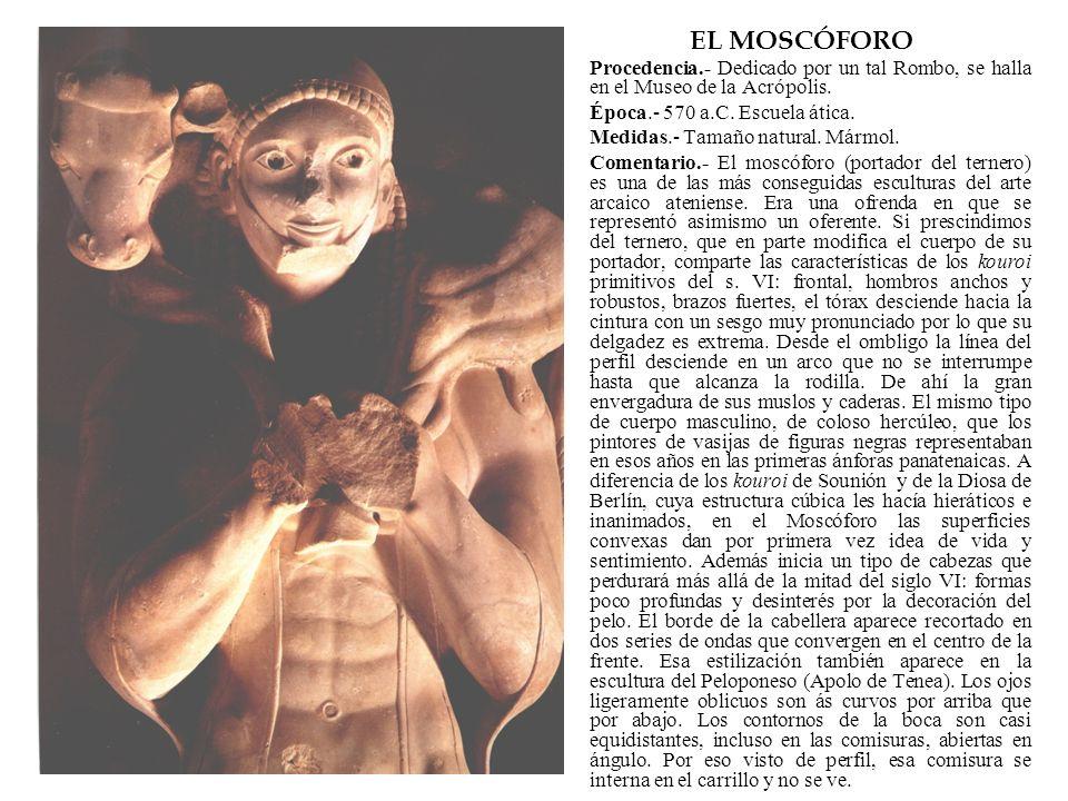 EL MOSCÓFORO Procedencia.- Dedicado por un tal Rombo, se halla en el Museo de la Acrópolis. Época.- 570 a.C. Escuela ática. Medidas.- Tamaño natural.