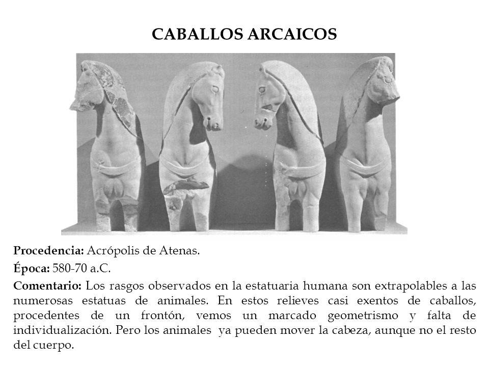 CABALLOS ARCAICOS Procedencia: Acrópolis de Atenas. Época: 580-70 a.C. Comentario: Los rasgos observados en la estatuaria humana son extrapolables a l
