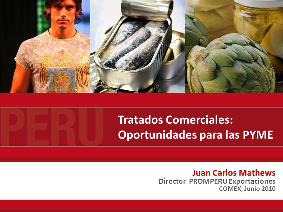 AGENDA I.PARTICIPACION DE PYMES EN LAS EXPORTACIONES PERUANAS.