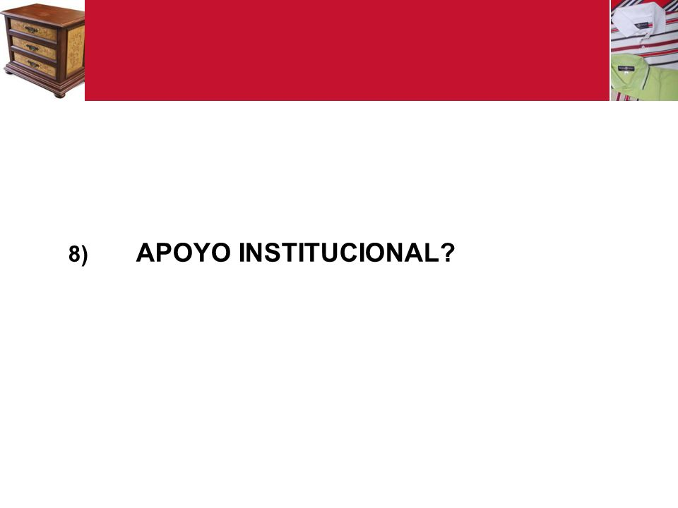 8) APOYO INSTITUCIONAL?