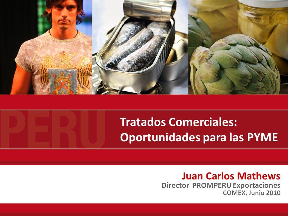 Juan Carlos Mathews Director PROMPERU Exportaciones COMEX, Junio 2010 Tratados Comerciales: Oportunidades para las PYME