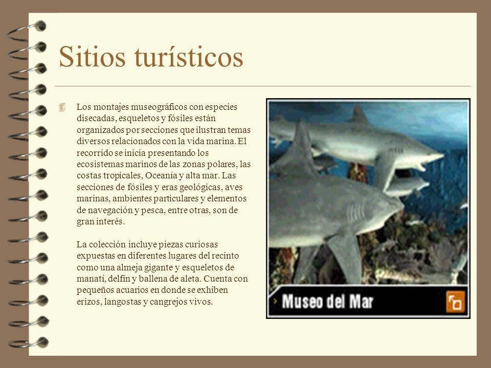 Sitios turísticos 4 Exhibiciones permanentes de numerosas piezas de animales disecados dispuestos en vitrinas y dioramas que ilustran el proceso evolu