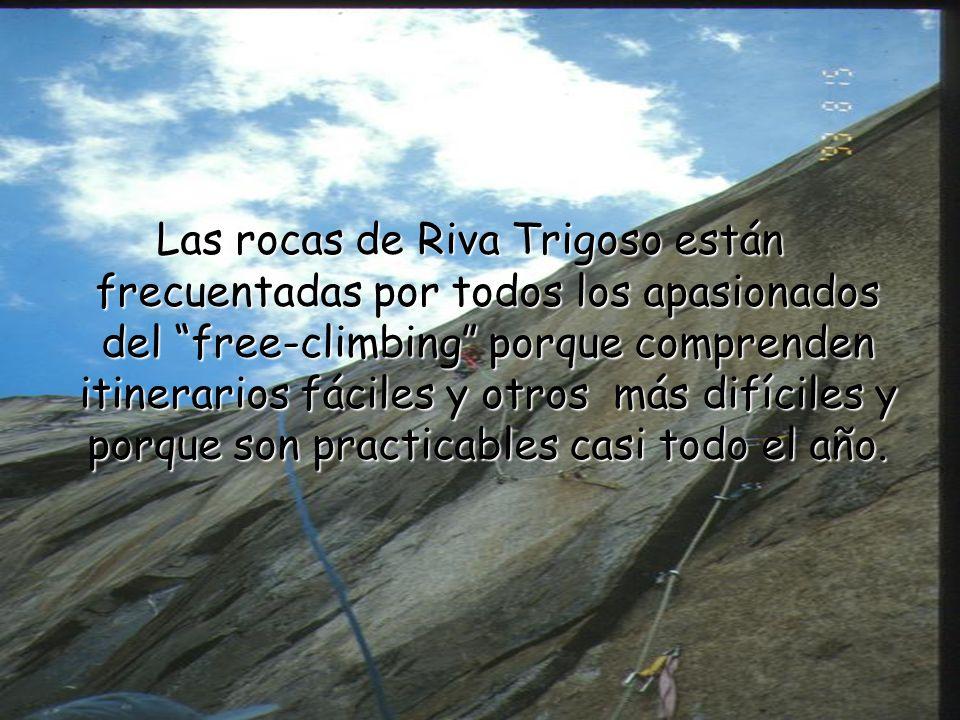 Las rocas de Riva Trigoso están frecuentadas por todos los apasionados del free-climbing porque comprenden itinerarios fáciles y otros más difíciles y porque son practicables casi todo el año.