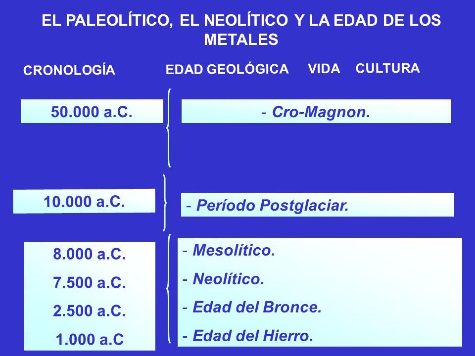 CRONOLOGÍAEDAD GEOLÓGICAVIDACULTURA 70.000.000 a.C. -Era Terciaria. - Mamíferos, Ramapiteco, Australopiteco. EL PALEOLÍTICO, EL NEOLÍTICO Y LA EDAD DE
