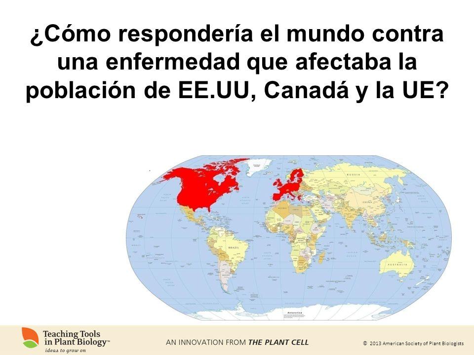 © 2013 American Society of Plant Biologists ¿Cómo respondería el mundo contra una enfermedad que afectaba la población de EE.UU, Canadá y la UE?