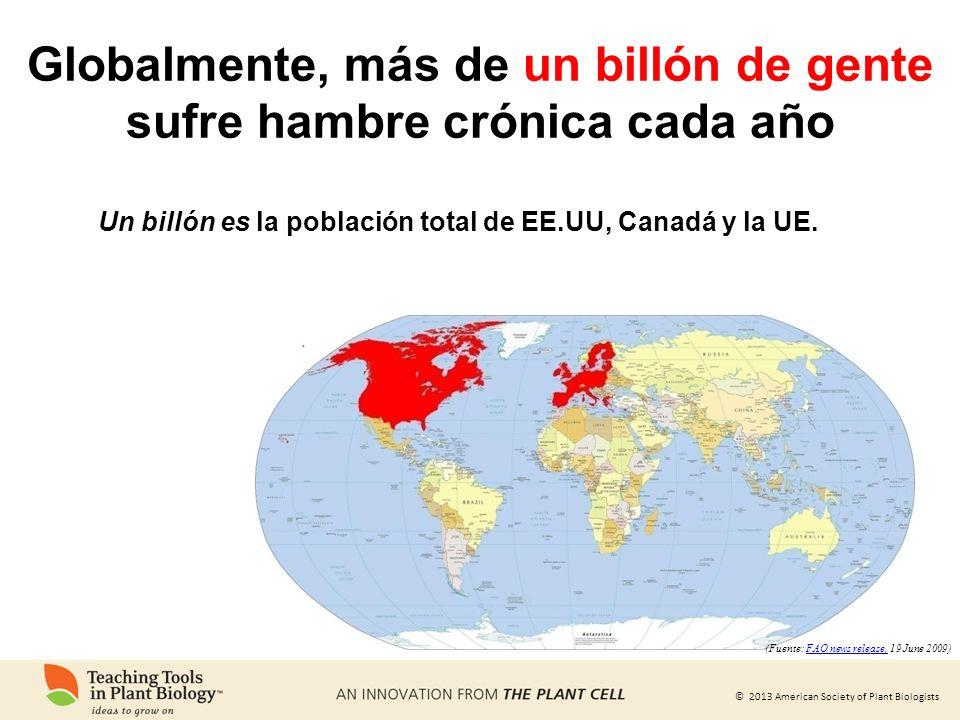 © 2013 American Society of Plant Biologists Globalmente, más de un billón de gente sufre hambre crónica cada año Un billón es la población total de EE