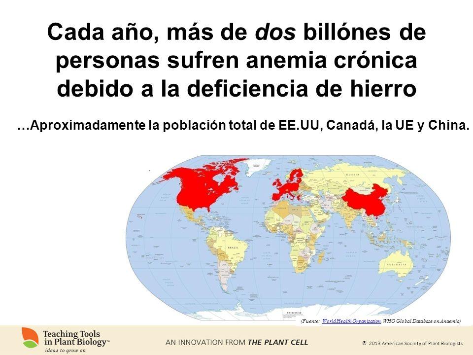 © 2013 American Society of Plant Biologists …Aproximadamente la población total de EE.UU, Canadá, la UE y China. (Fuente: World Health Organization, W