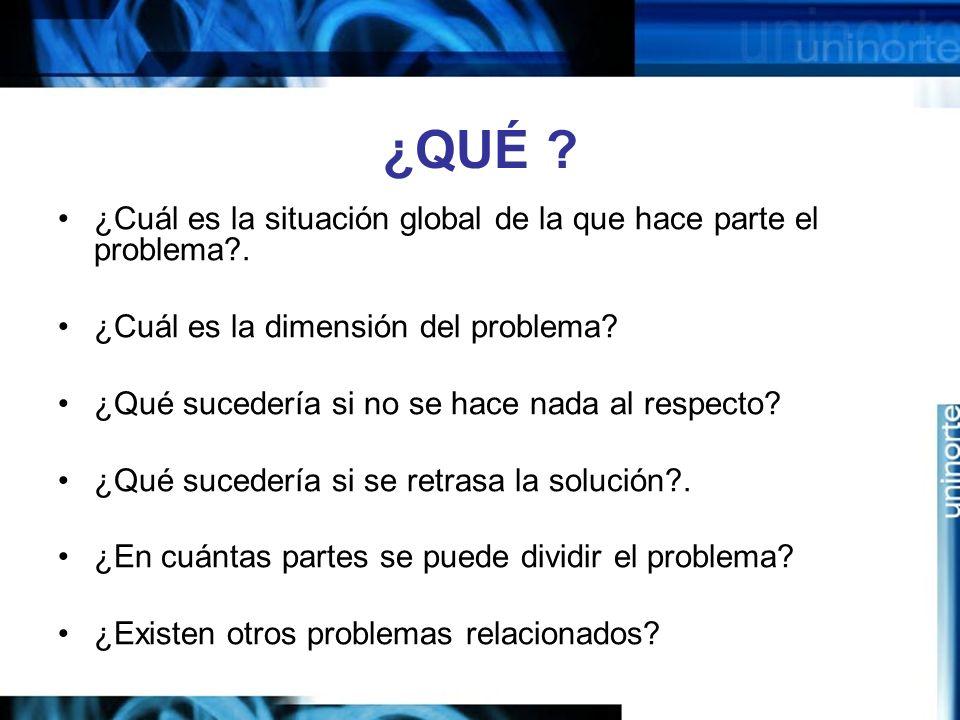 ¿QUÉ .¿Cuál es la situación global de la que hace parte el problema?.