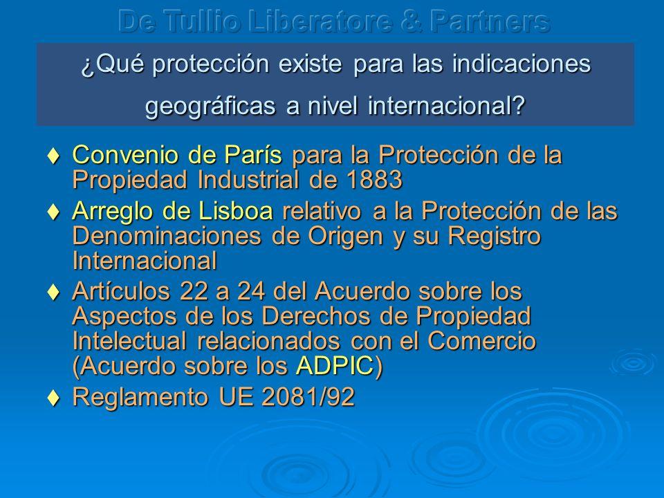 ¿Qué protección existe para las indicaciones geográficas a nivel internacional.