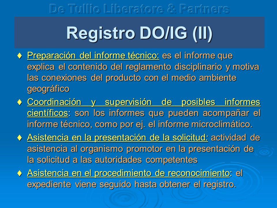 Registro DO/IG (II) Preparación del informe técnico: es el informe que explica el contenido del reglamento disciplinario y motiva las conexiones del p