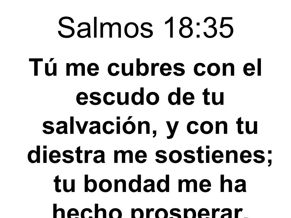 Salmos 54:4 Pero Dios es mi socorro; el Señor es quien me sostiene,