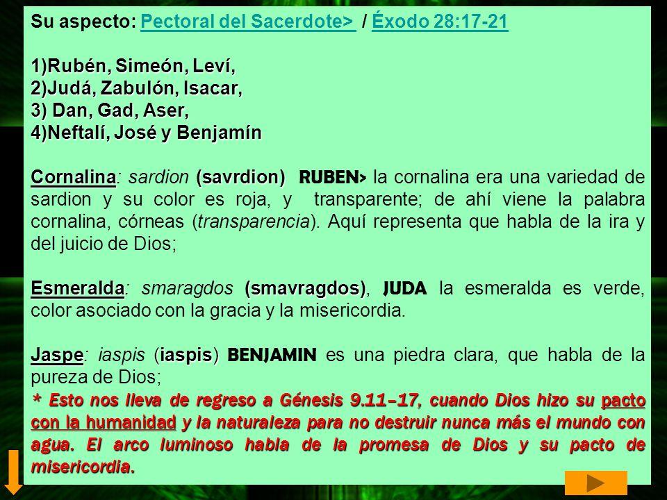 Su aspecto: Pectoral del Sacerdote> / Éxodo 28:17-21Pectoral del Sacerdote> Éxodo 28:17-21 1)Rubén, Simeón, Leví, 2)Judá, Zabulón, Isacar, 3) Dan, Gad