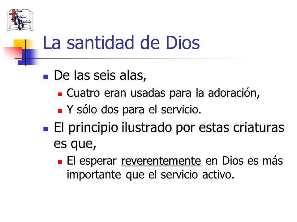 La santidad de Dios De las seis alas, Cuatro eran usadas para la adoración, Y sólo dos para el servicio. El principio ilustrado por estas criaturas es