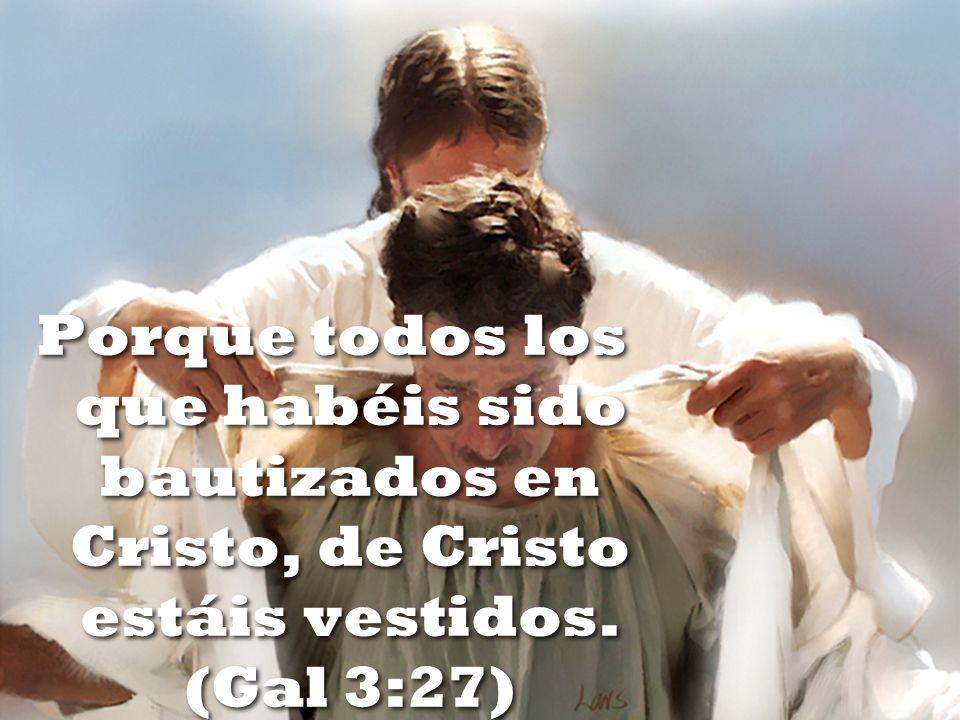 Porque todos los que habéis sido bautizados en Cristo, de Cristo estáis vestidos. (Gal 3:27)