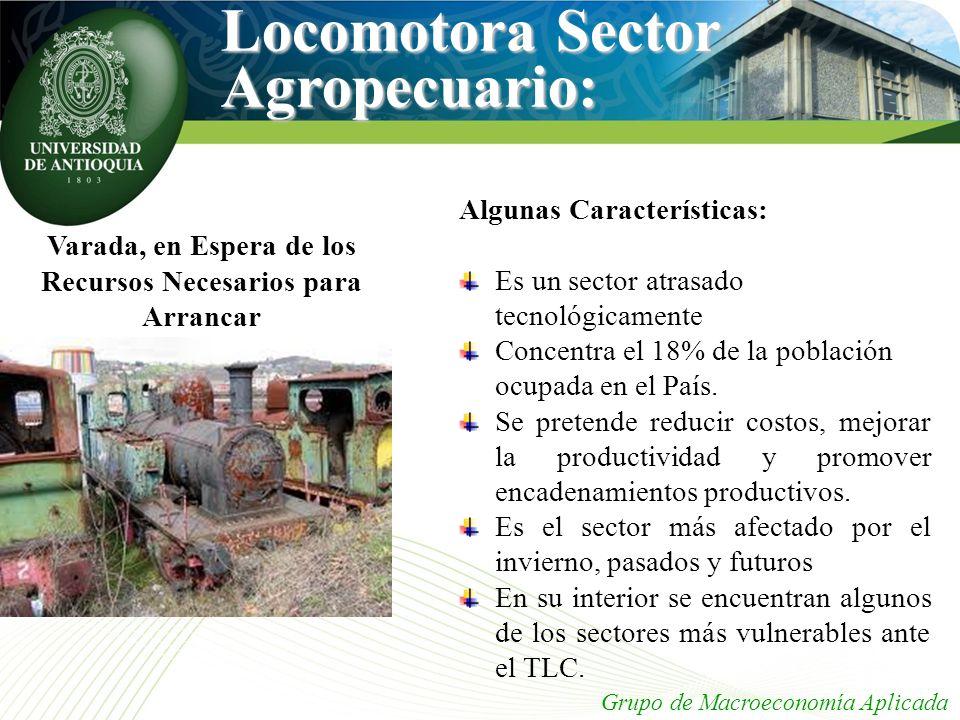 Grupo de Macroeconomía Aplicada Varada, en Espera de los Recursos Necesarios para Arrancar Locomotora Sector Agropecuario: Algunas Características: Es
