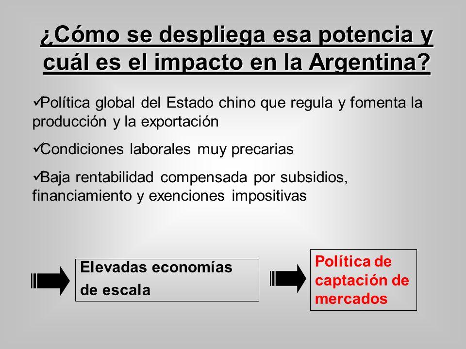 ¿Cómo se despliega esa potencia y cuál es el impacto en la Argentina? Política global del Estado chino que regula y fomenta la producción y la exporta