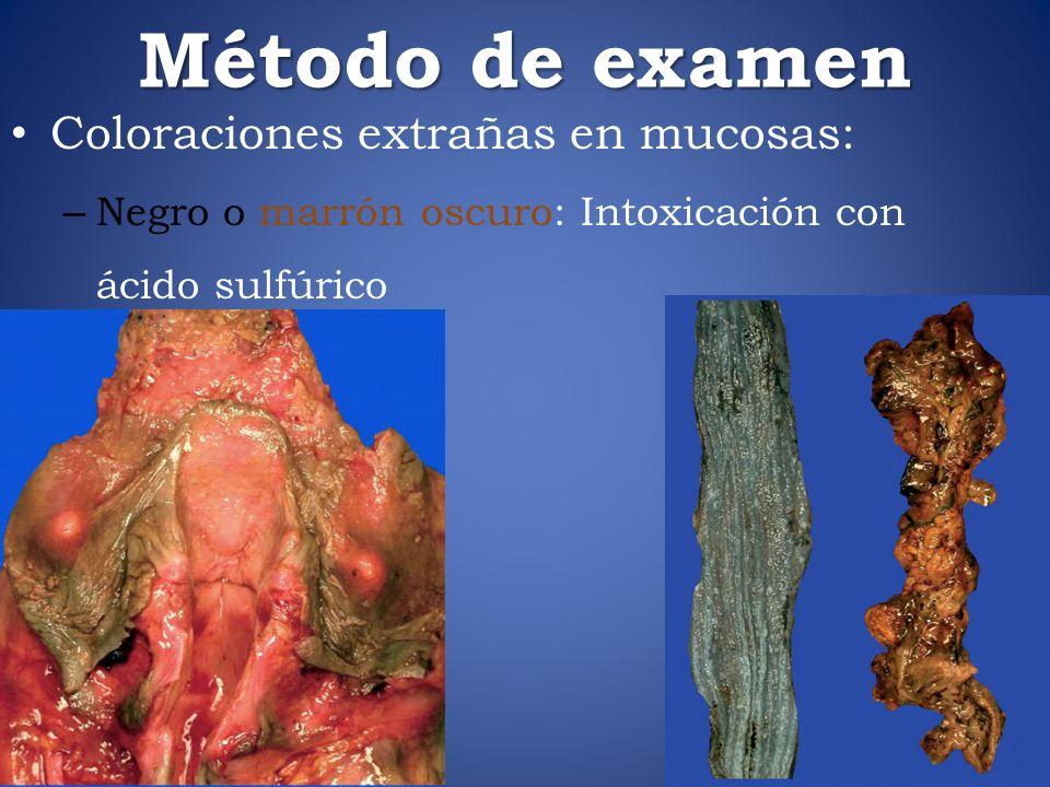 Método de examen Coloraciones extrañas en mucosas: – Negro o marrón oscuro: Intoxicación con ácido sulfúrico