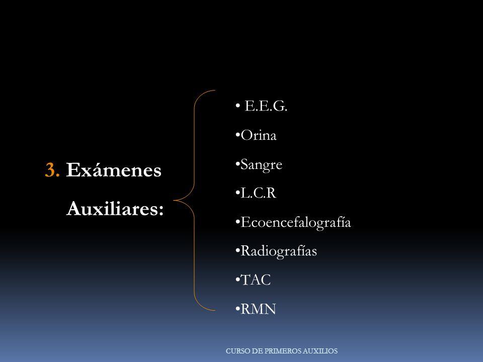 3.Exámenes Auxiliares: Auxiliares: E.E.G.