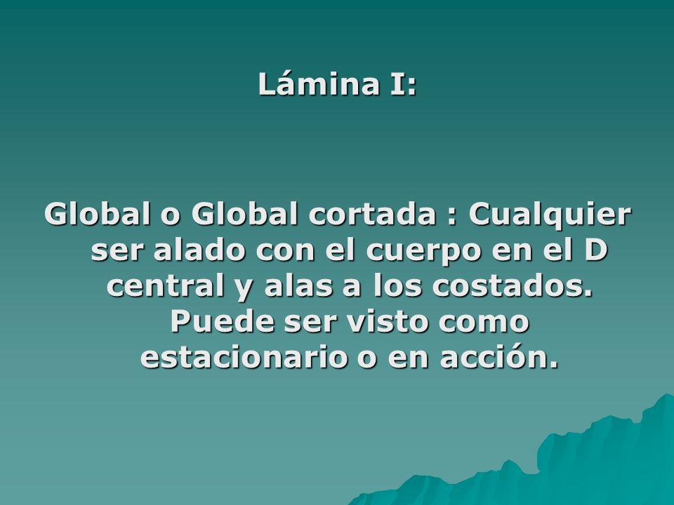 Lámina I: Global o Global cortada : Cualquier ser alado con el cuerpo en el D central y alas a los costados. Puede ser visto como estacionario o en ac