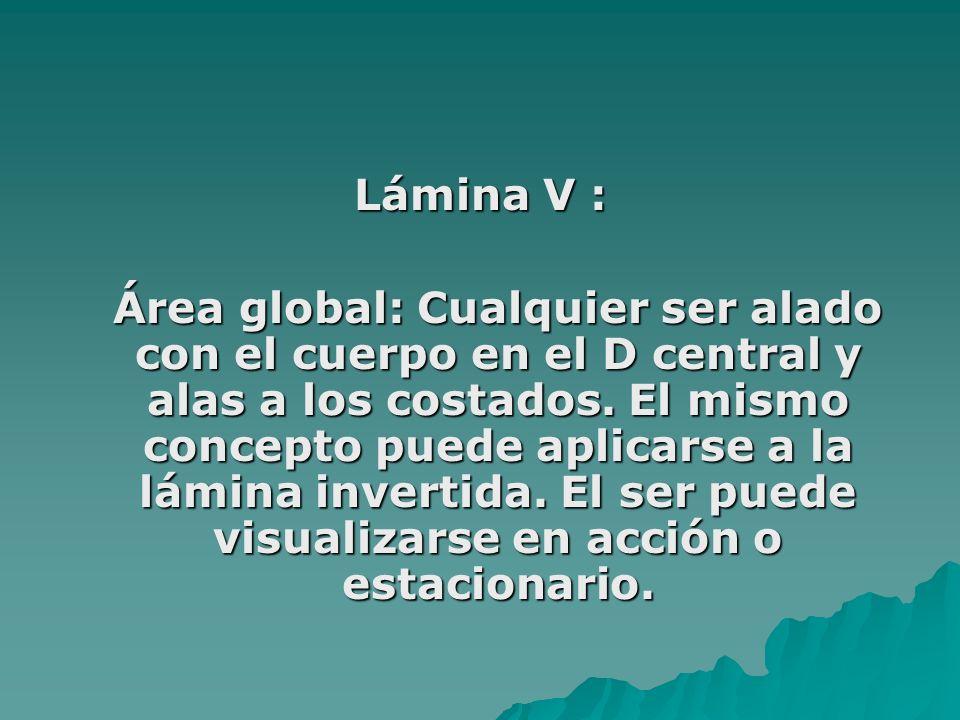 Lámina V : Área global: Cualquier ser alado con el cuerpo en el D central y alas a los costados. El mismo concepto puede aplicarse a la lámina inverti