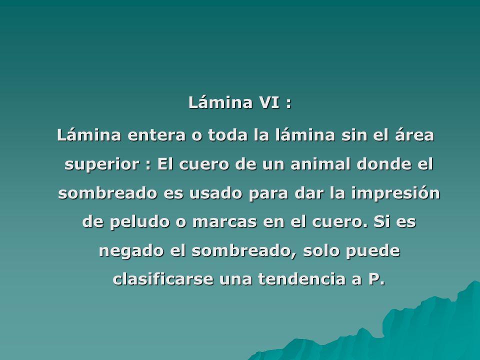 Lámina VI : Lámina entera o toda la lámina sin el área superior : El cuero de un animal donde el sombreado es usado para dar la impresión de peludo o