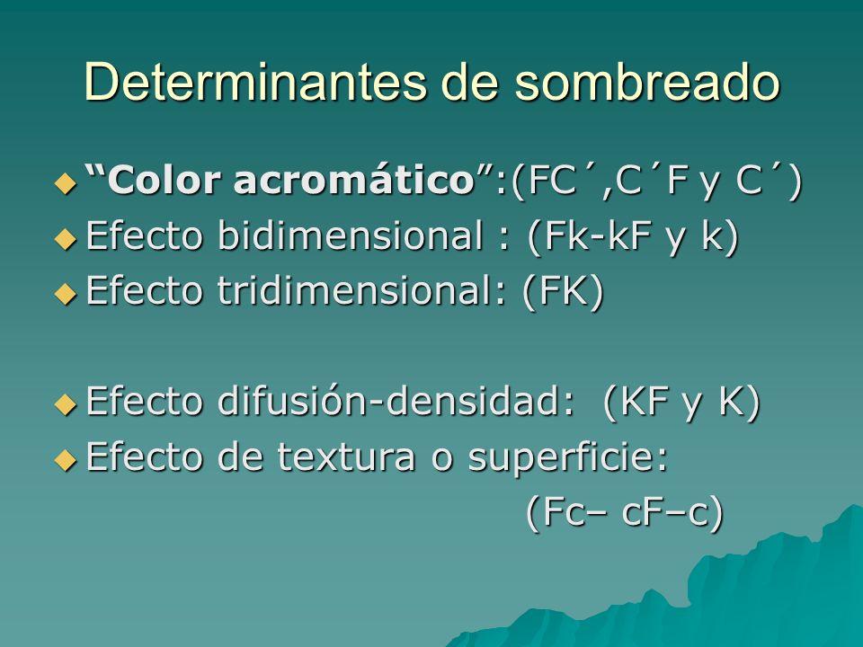 Determinantes de sombreado Color acromático:(FC´,C´F y C´) Color acromático:(FC´,C´F y C´) Efecto bidimensional : (Fk-kF y k) Efecto bidimensional : (