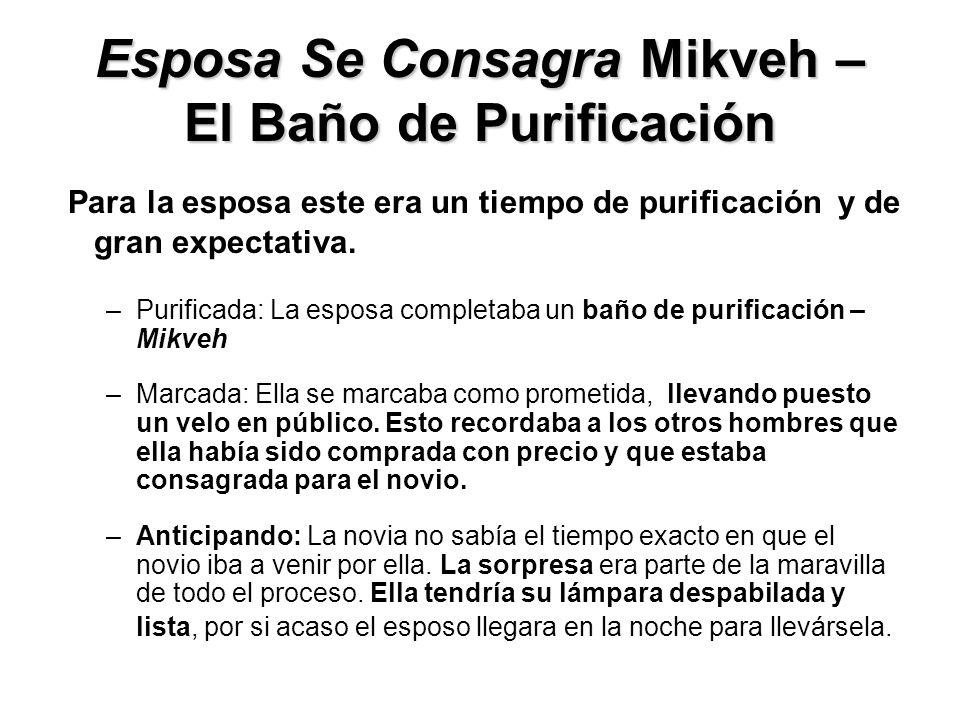 Esposa Se Consagra Mikveh – El Baño de Purificación Para la esposa este era un tiempo de purificación y de gran expectativa. –Purificada: La esposa co