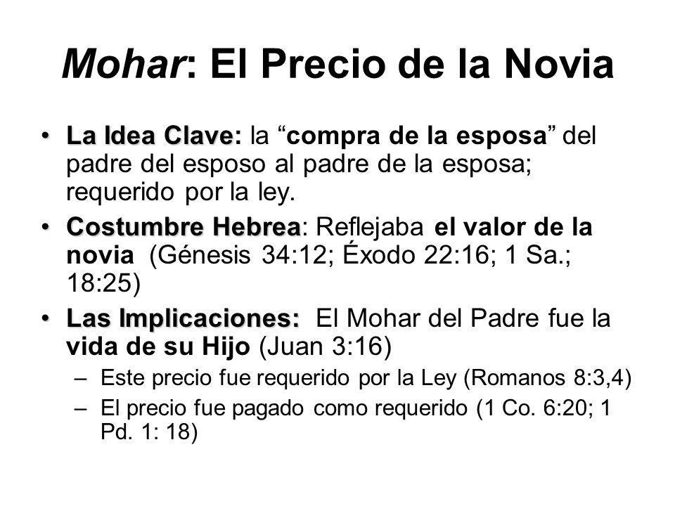 Mohar: El Precio de la Novia La Idea ClaveLa Idea Clave: la compra de la esposa del padre del esposo al padre de la esposa; requerido por la ley. Cost