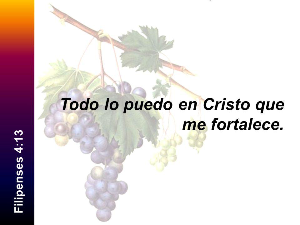 F i l i p e n s e s 4 : 1 3 Todo lo puedo en Cristo que me fortalece.