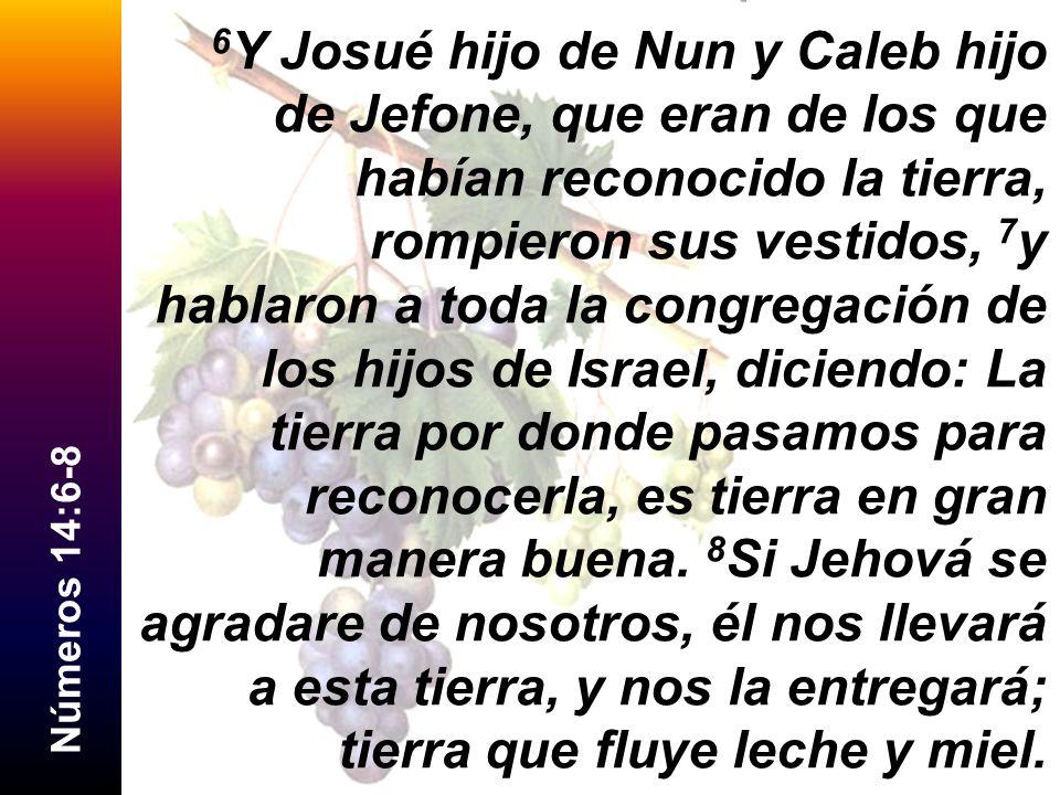 N ú m e r o s 1 4 : 6 - 8 6 Y Josué hijo de Nun y Caleb hijo de Jefone, que eran de los que habían reconocido la tierra, rompieron sus vestidos, 7 y h