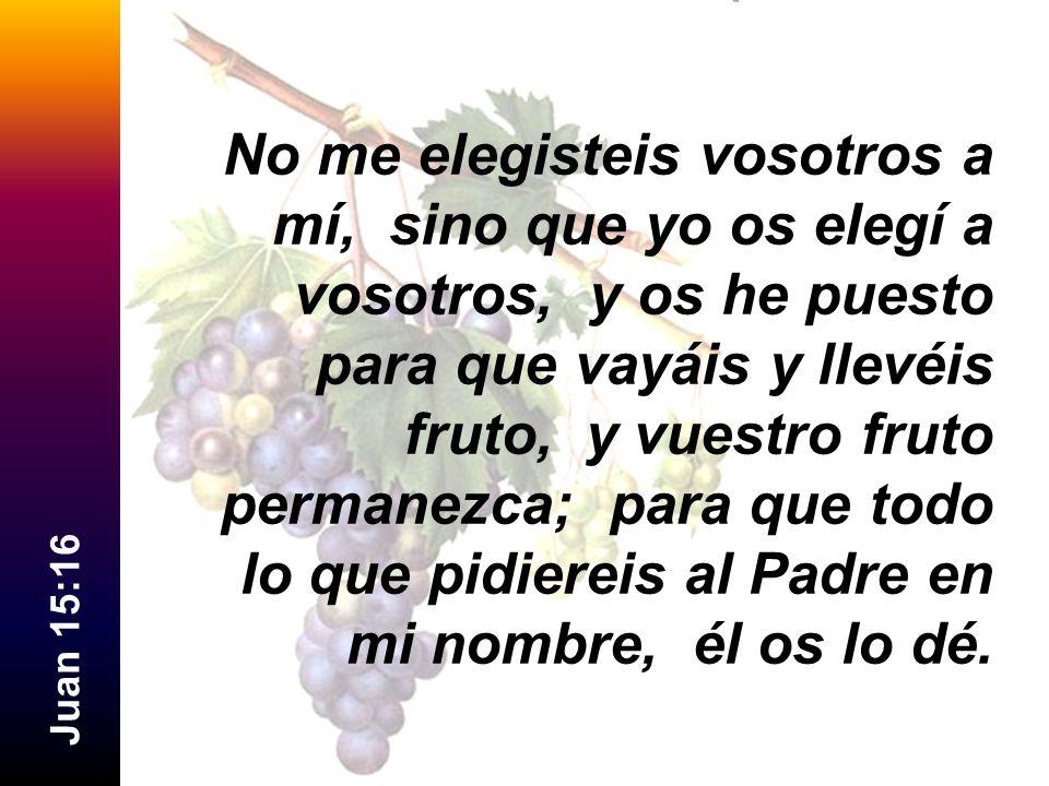 J u a n 1 5 : 1 6 No me elegisteis vosotros a mí, sino que yo os elegí a vosotros, y os he puesto para que vayáis y llevéis fruto, y vuestro fruto per