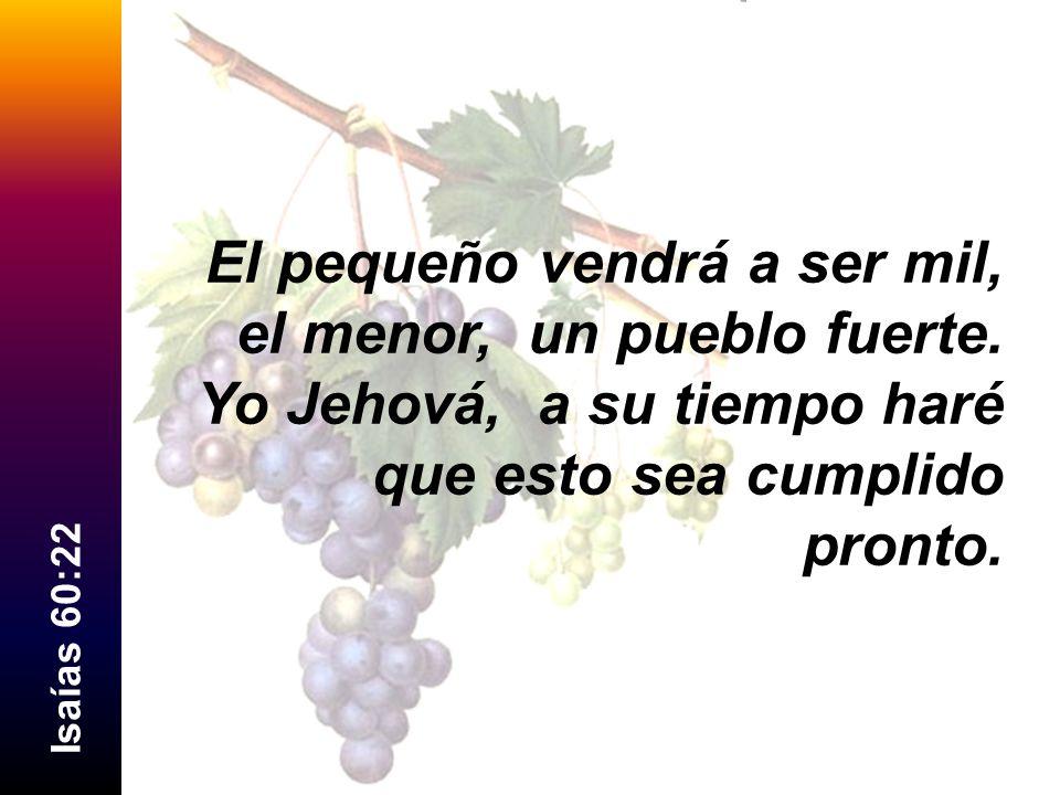 I s a í a s 5 4 : 1 - 5 1 Regocíjate, oh estéril, la que no daba a luz; levanta canción y da voces de júbilo, la que nunca estuvo de parto; porque más son los hijos de la desamparada que los de la casada, ha dicho Jehová.