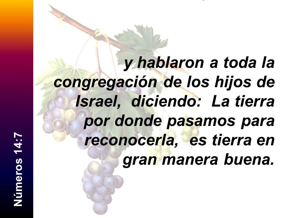 N ú m e r o s 1 4 : 7 y hablaron a toda la congregación de los hijos de Israel, diciendo: La tierra por donde pasamos para reconocerla, es tierra en g