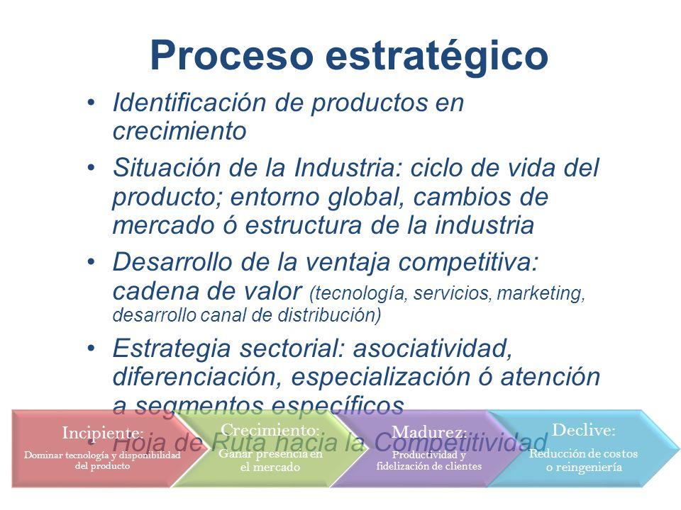 Proceso estratégico Identificación de productos en crecimiento Situación de la Industria: ciclo de vida del producto; entorno global, cambios de merca